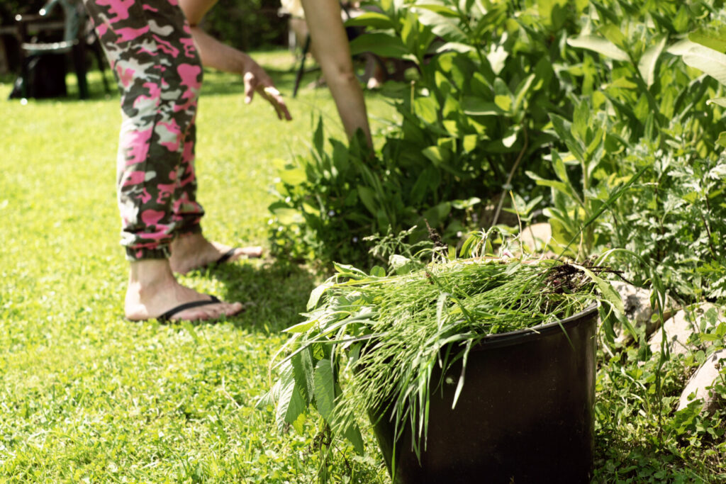 For gardeners anyway, along with death and taxes, weeding is another certainty in life.