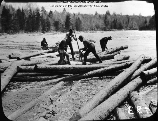 A Northern Maine log drive circa 1900. Before European settlement, in other words before logging, more than half of Maine forests were old-growth.