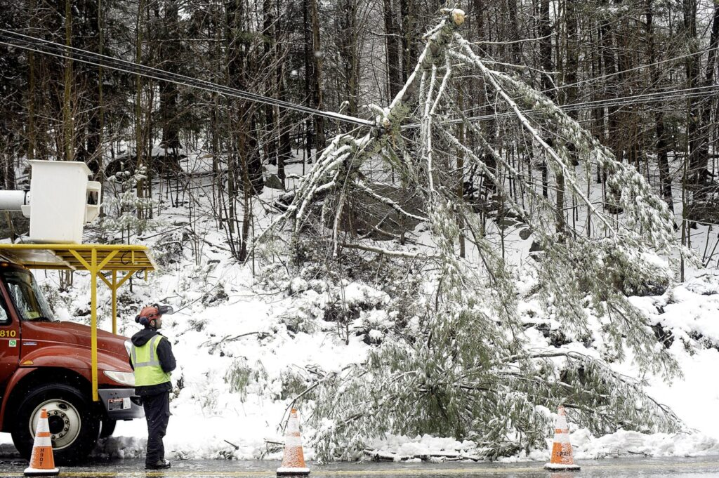 An employee of Lucas Tree Experts examines a tree branch that fell across wires along the Buckfield Road in Turner on Friday. The road was down to one lane while crews worked on removing the limb.