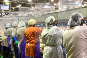 Virus_Outbreak_Meat_Processing_Safety_71700