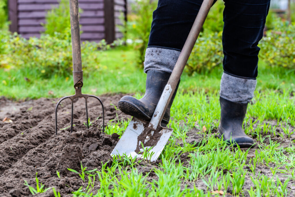 All your normal spring activities cancelled because of the pandemic? Try gardening. But start slow!