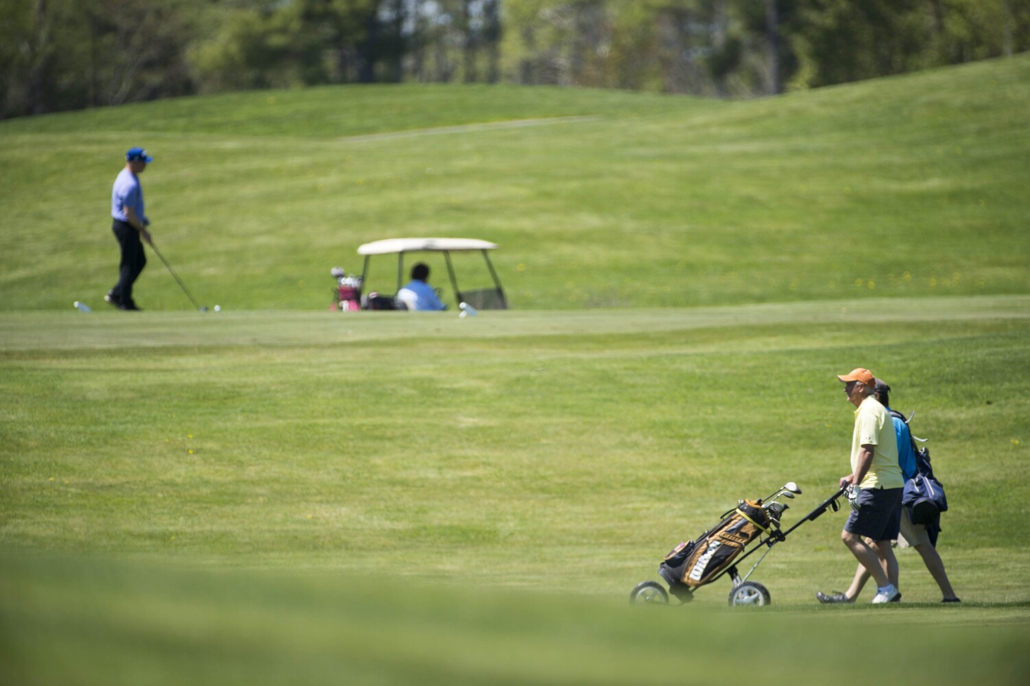 Maine Relaxes Restrictions For Golf Courses During The Pandemic Portland Press Herald