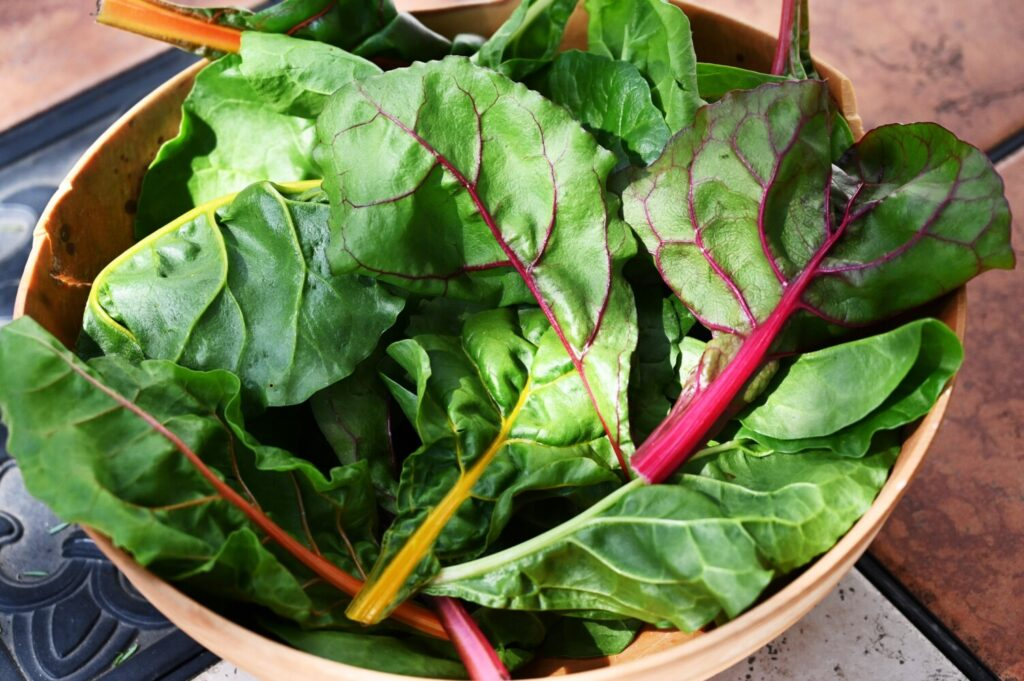 Chard has history on its side: it has been cultivated since at least the third century,
