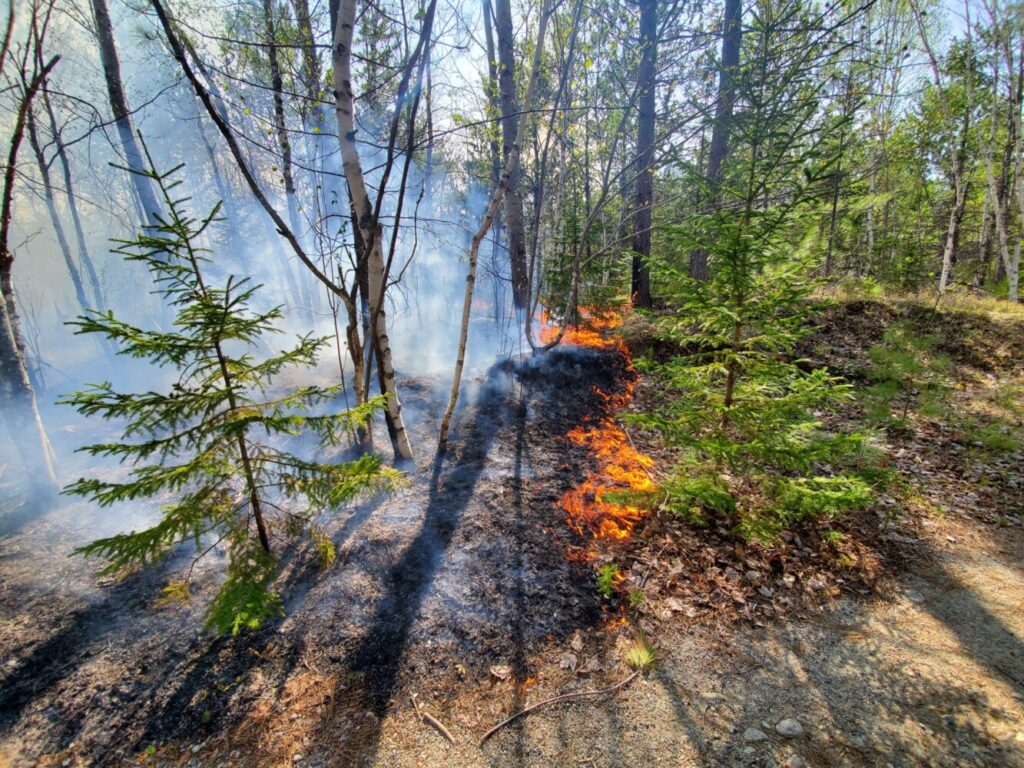 This fire at Baxter State Park was brought under control on Friday. It burned 45 acres.