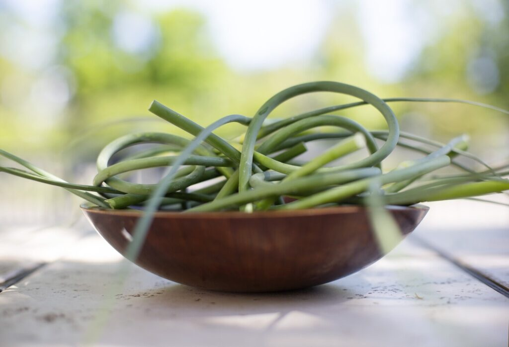 You can find garlic scapes at your local farmers market now. Farmers harvest the scapes so they don't steal nutrients from the growing garlic bulbs.
