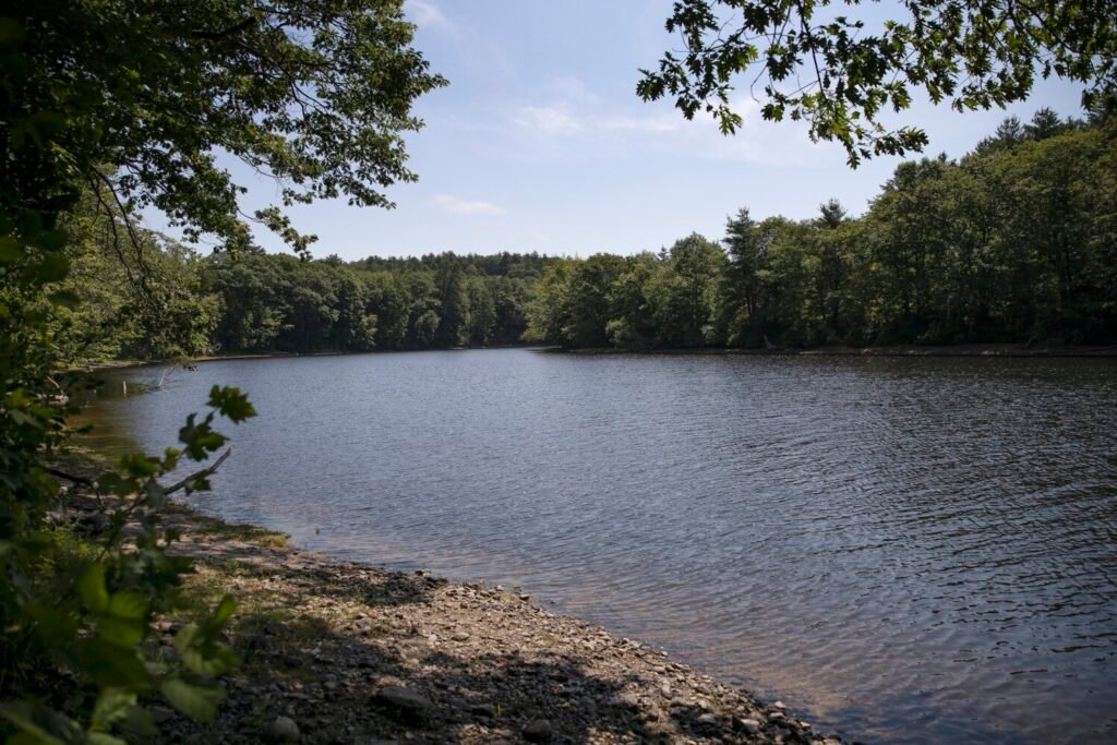 The Ecology School has nearly reached its fundraising goal and aims to open the new campus in November. The River Bend Farm campus has about a mile of frontage on the Saco River.