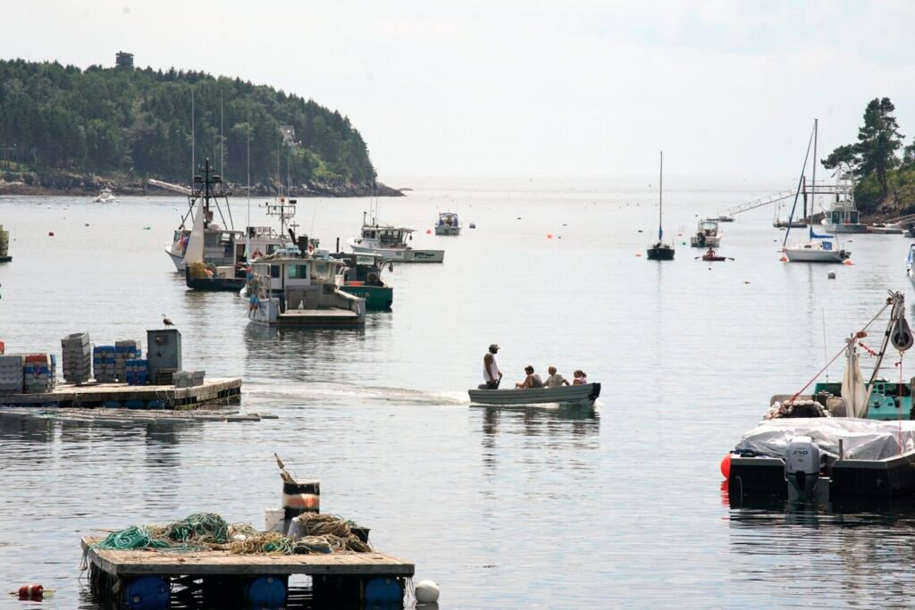 People cross Mackerel Cove on Bailey Island in a skiff on Tuesday. Farther out in the cove, around the point of land at the top left in this photo, a woman was attacked and killed by a great white shark on Monday.