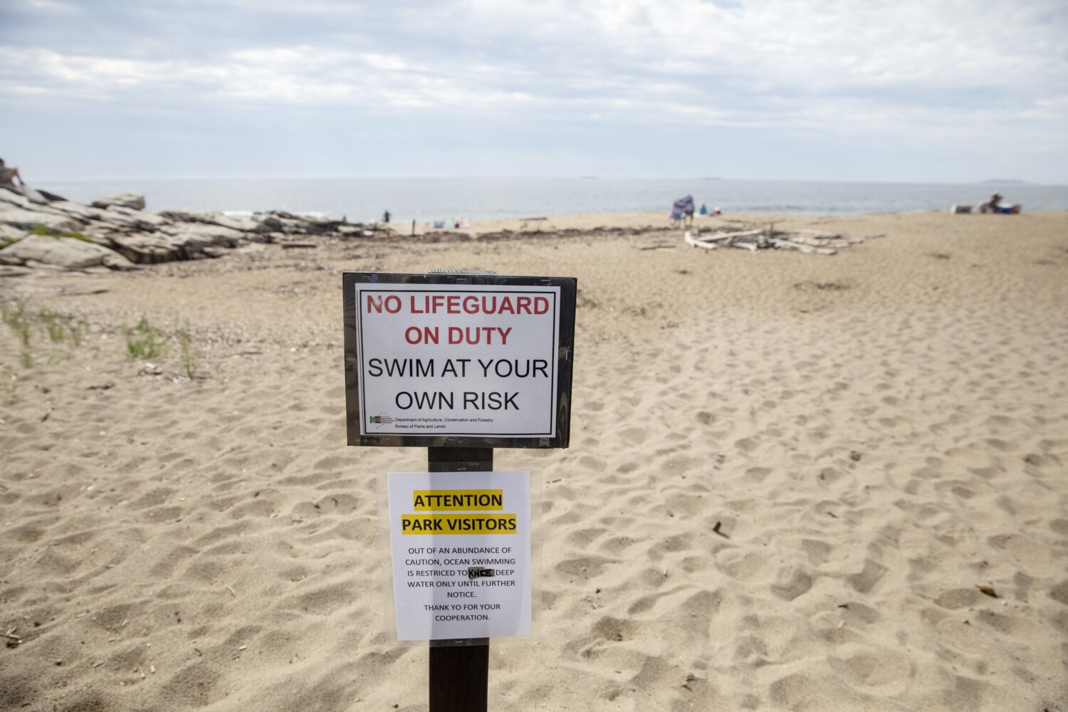 Fatal Shark Attack Shakes Sense Of Security Along Maine Coast Portland Press Herald