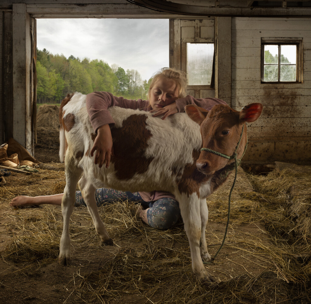 """""""Why Buy the Cow"""" photo by James Southard."""