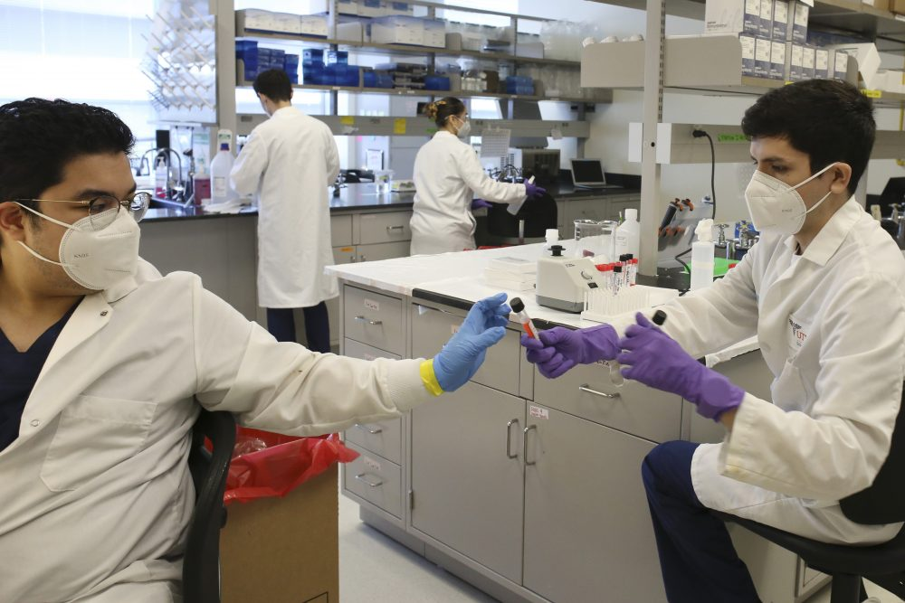 Lab technicians work with COVID-19 testing sample Friday at the UT Health RGV Clinical Lab on the UTRGV campus in Edinburg, Texas.