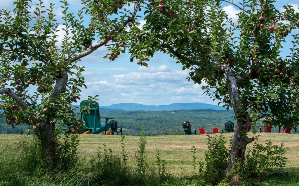 It's hard to beat the view at Ricker Hill Orchards in Turner.