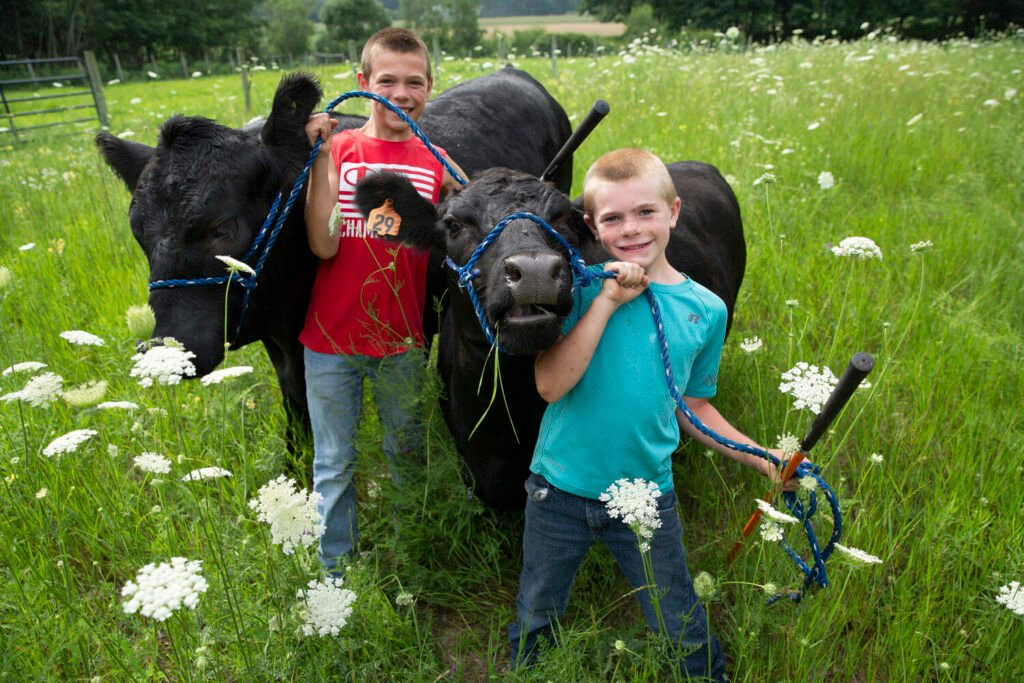 Ryan Tammaro, left, and his brother Ben stand with Charlie, an Angus steer and Abby, an Aberdeen cow, at Down Home Farm in Cape Elizabeth in 2020, when the boys' plans to show their animals at several Maine fairs were canceled because of the pandemic.
