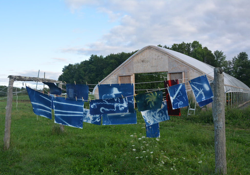 "UMF Emery Community Arts Center features The ""Farm Tools Project,"" a visually stunning exhibit of cyanotype images created with sunlight and water by Michel Droge and Sarah Loftus."