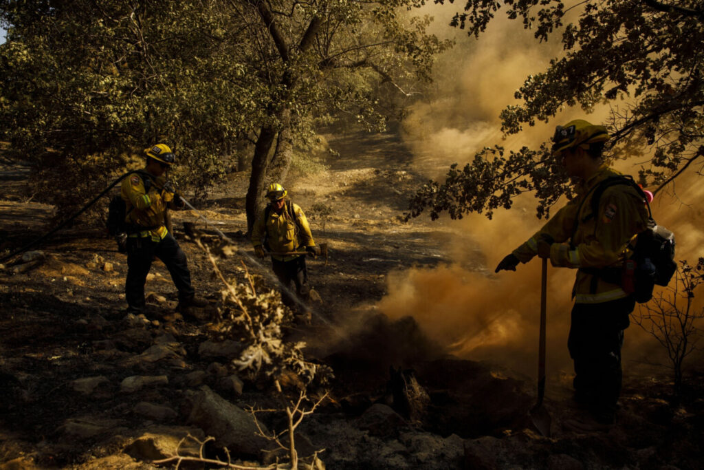 Firefighters extinguish a hot spot while working to contain the Apple fire in Yucaipa, Calif., on Aug. 4.