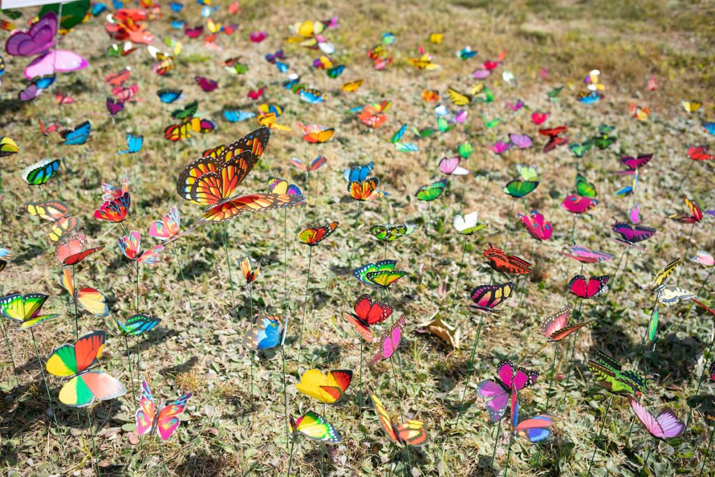 A butterfly garden in  Davis Park in Bethel. Each of the 380 butterflies represents one death from a drug overdose in Maine in 2019.