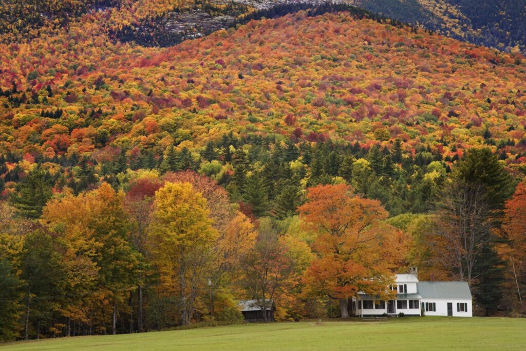 A farmhouse near Evans Notch is surrounded by autumnal color in 2019.