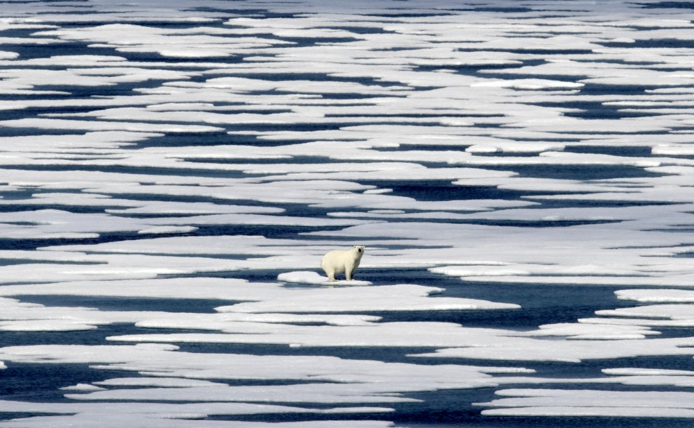 Pace of climate change shown in new report...