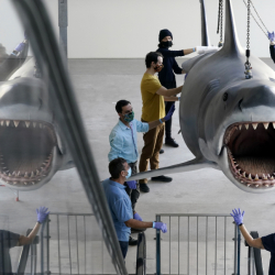 Jaws__Installation_at_The_Academy_Museum_of_Motion_Pictures_91883