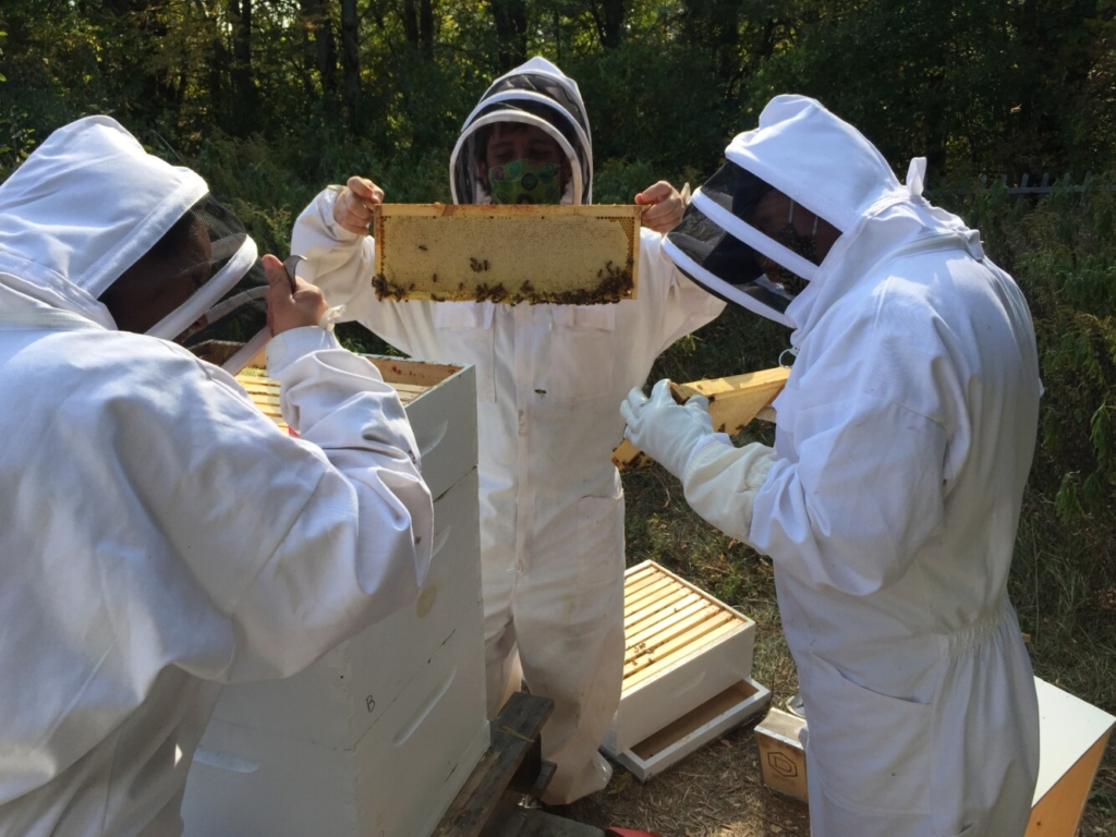 Students of Skowhegan Area High School's Eco Team working on their beehives.