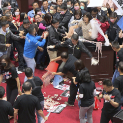 Taiwan_Parliament_Pork_Fight_27103