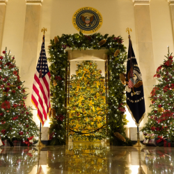 White_House_Christmas_87347