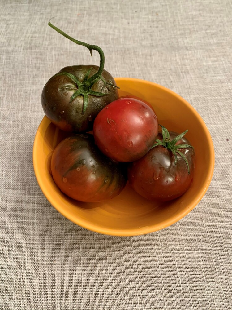 Tomatoes in November?? Yes, you can if they are Cherokee Purple heirloom tomatoes from Replenova Farm in Durham.