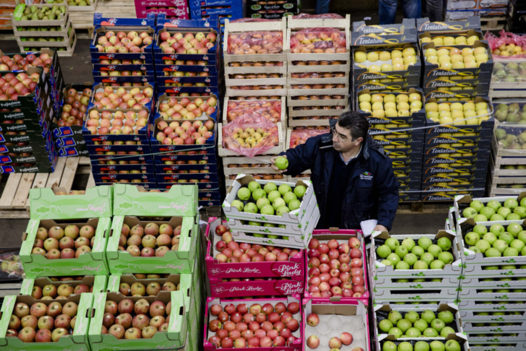 A buyer inspects a green apple as he stands beside crates of fresh produce in the fruit and vegetable section of Rungis wholesale food market in Rungis, France, on Jan. 15, 2015.