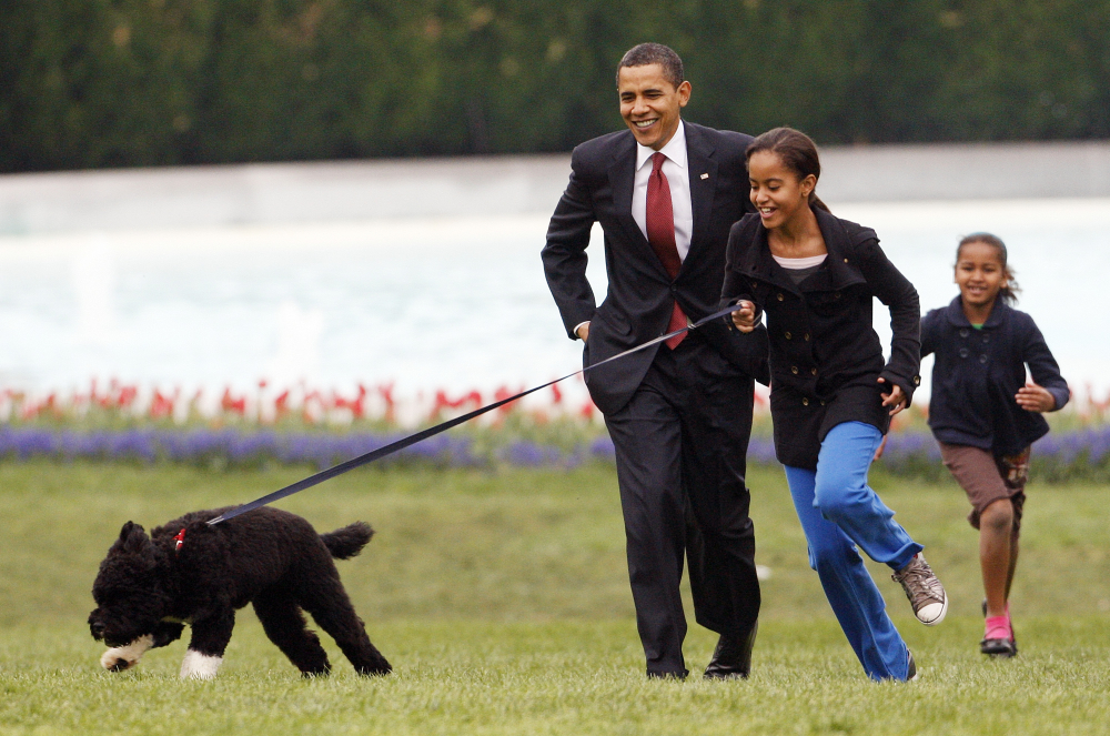 Malia Obama runs with Bo, followed by President Barack Obama and Sasha Obama, on the South Lawn of the White House in Washington in 2009.