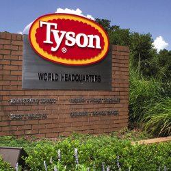 Tyson_Foods_Results_58084