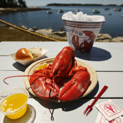 Lobster_Prices_80659