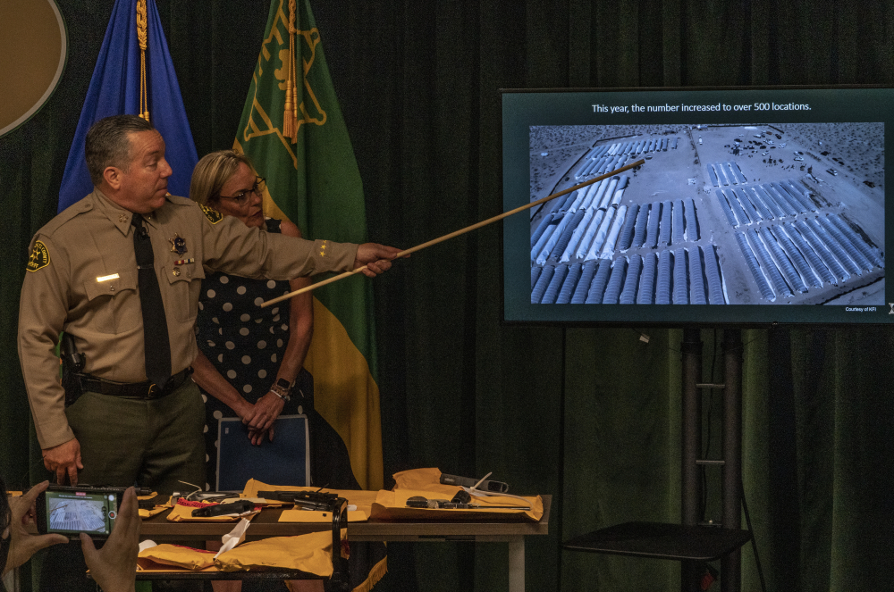 Los Angeles County Sheriff Alex Villanueva, and Los Angeles County Supervisor Kathryn Barger stand in front of confiscated firearms, as he points to a picture of some 500 illegal pot operations at a news conference in Los Angeles on July 7. (AP Photo/Damian Dovarganes)