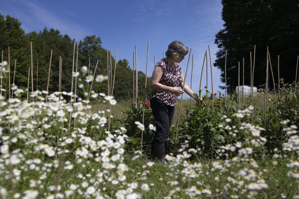 Callie Kimball, an accomplished playwright who suffered a brain injury in April 2018, has started gardening as a form of therapy, growing dahlias at a farm in Pownal.