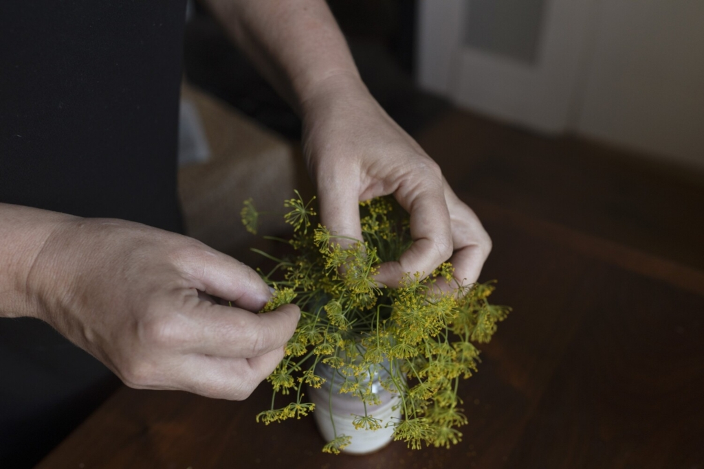 BRUNSWICK, ME - AUGUST 26: Christine Burns Rudalevige picks dill flowers to sprinkle on top of a mixed potato salad. (Staff photo by Brianna Soukup/Staff Photographer)