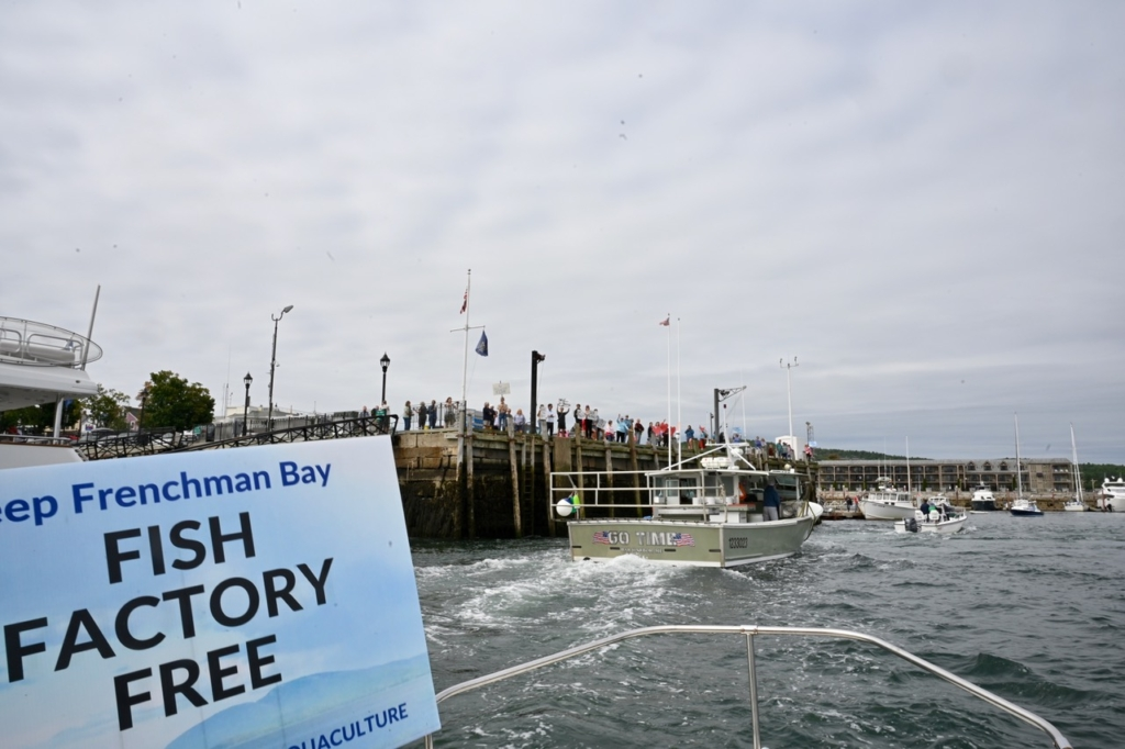 """The """"Save the Bay"""" flotilla on Sunday passed by the Bar Harbor town pier, where people holding signs against the proposed fish farm were gathered."""