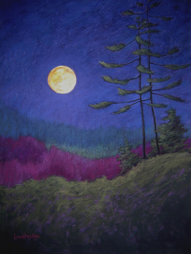 """""""Night Vision,"""" a pastel painting by Sally Loughridge Busch, is on view at the Maine Coastal Islands National Wildlife Refuge visitor center in Rockland."""