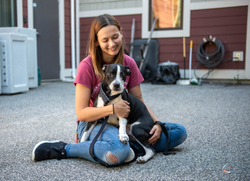 Clyde sits on Angela Poulin's lap Monday at the Greater Androscggin Humane Society. Poulin is the foster and feline coordinator for the organization. Clyde came from a shelter that was evacuated before Hurricane Ida. Wings of Rescue coordinated the transportation.
