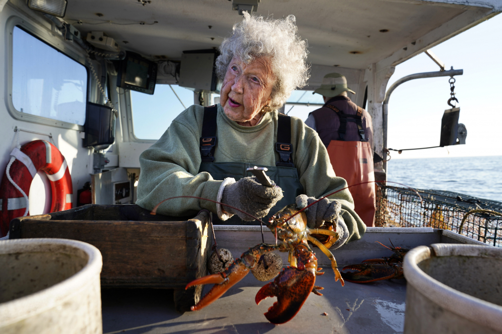 Virginia Oliver, age 101, works as a sternman, measuring and banding lobsters on her son Max Oliver's boat off Rockland in late August.