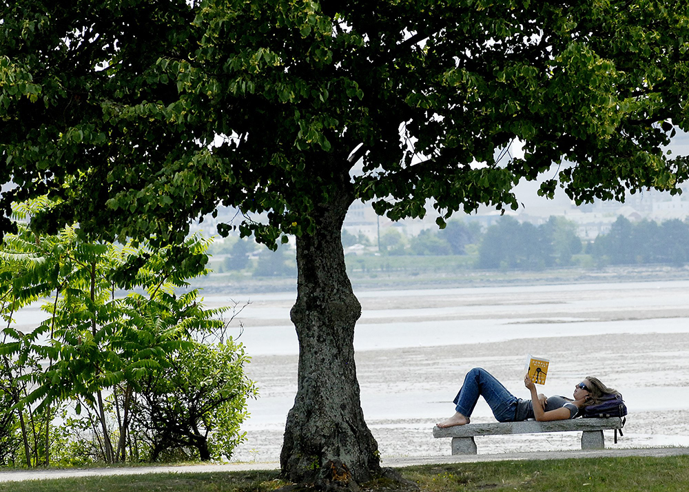 Sarah VanderLink of New Gloucester keeps cool under the shade of a tree while reading a book near back cove in Portland in 2010.