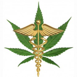 1edit_medical_marijuana