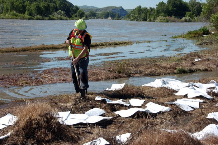 An ExxonMobil contractor cleans up oil along the banks of the Yellowstone River in Billings, Mont., Sunday. A company pipeline about 20 miles upriver near Laurel, Mont., ruptured and spilled an estimated 1,000 barrels of crude into the Yellowstone on Saturday. (AP Photo/Matthew Brown)