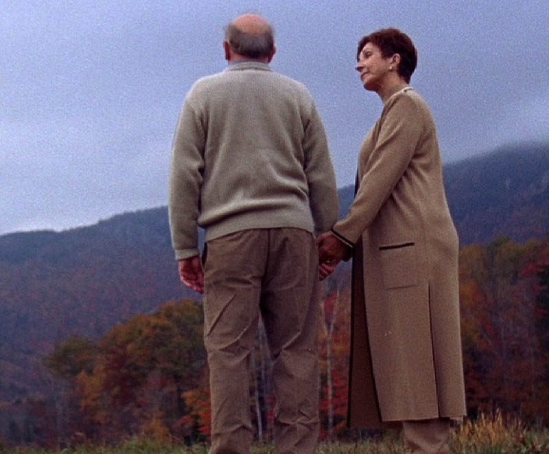 """TOUCHING: """"The Cure,"""" is a film by Ryan Cook, a 2005 Waterville Senior High School graduate, about a man's efforts to cure his wife of a coma."""