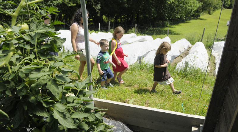 TOUR GUIDE: Sage Whitehead, 5, right, leads a tour of her family's Winterberry Farm on Sunday morning in Belgrade. She and her siblings were leading the tours of the farm for Maine's 22nd annual Open Farm Day.