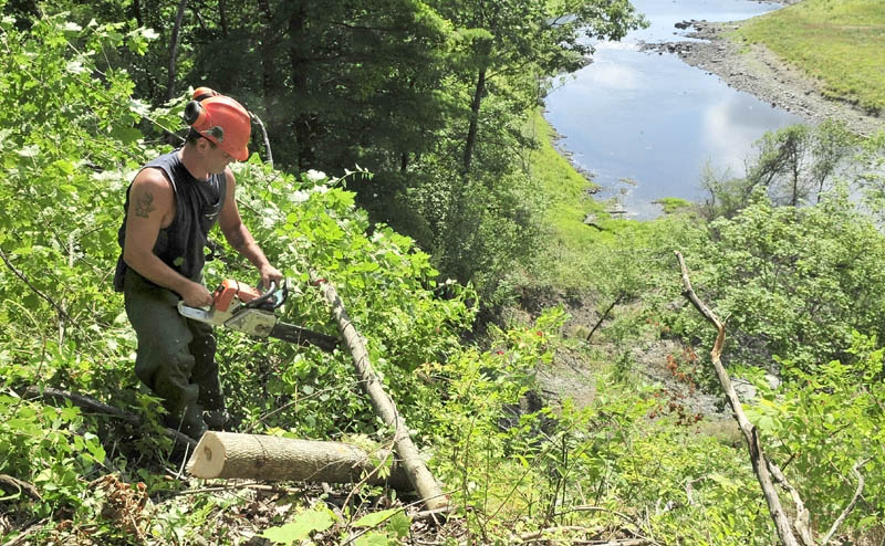 Jason Fitch of J&L Tree Service cuts up a tree he felled behind Fort Hill Cemetery, overlooking the steep bank near the Sebasticook River in Winslow on Wednesday. The work is being done to help reduce landslide erosion by removing top-heavy trees susceptible to blowing over.