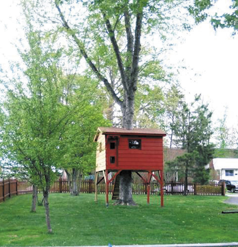 Mark W. Grapin built this treehouse for his sons at their Falls Church, Va., house to try to give them the kind of refuge he had as a child growing up in California. Fairfax county zoning officials had other ideas.