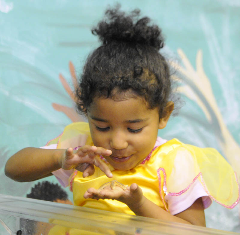 PRINCESS LATRICIA: Dressed as a princess, Latricia Jones-Brown, 3, of Mount Vernon, looks at a starfish from the touch tank at the Children's Discovery Museum on Saturday in Augusta. The events there were one of three Halloween events in the city.