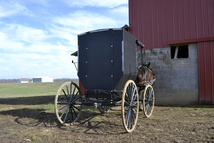 An unflashy Amish buggy sits parked on Jacob Gingerich's farm near Mayfield, Ky. Gingerich and other Amish men have run afoul of the law for not hanging an orange slow moving vehicle sign on their buggies.