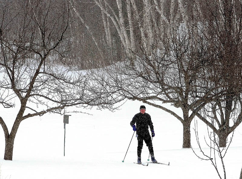 A Nordic skier is framed by trees as more snow falls on the trails Saturday morning at the Viles Arboretum in Augusta.