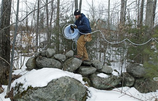 In this Feb. 14, 2012, photo, Eric Beckmann runs a maple sap collection tube through the woods at a timber stand in Newbury, N.H.