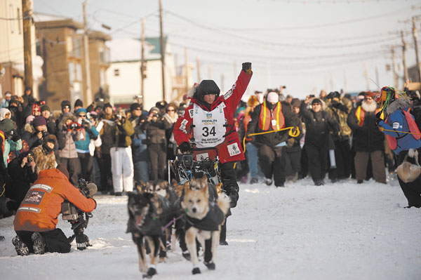 WINNER: Dallas Seavey reaches the finish line to claim victory Tuesday in the Iditarod Trail Sled Dog Race in Nome, Alaska. Seavey became the youngest musher to win.
