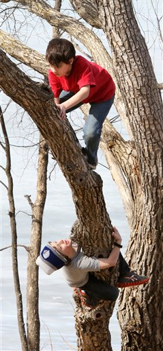 As temperatures eclipse 60 degrees Tuesday afternoon in Brainerd, Minn., Noah Rushmeyer (top) and Sam Pikula climb a tree.